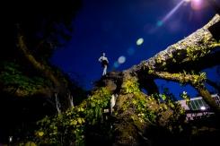 tree shoot olivia color-2